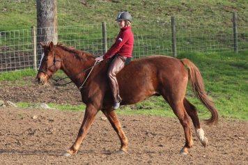 Legs Riding